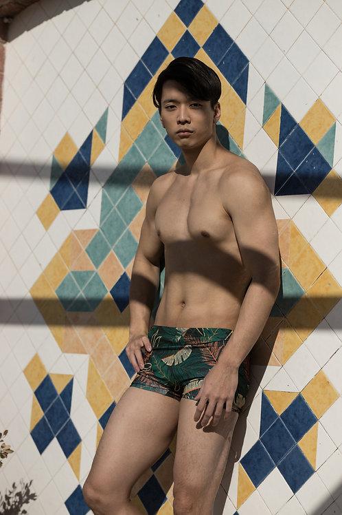 Brazilian Swimming Shorts / Trunks  - Sunga Paixão no. 25
