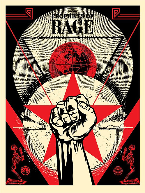 Prophets of Rage – New Day Rising 2017  61 x 46 cm