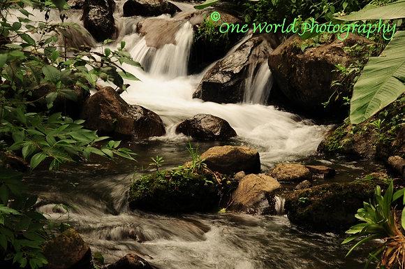 Rushy Brook