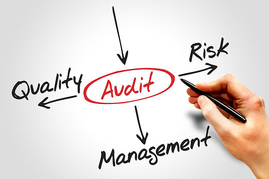 Audit, Risk, Managment, Quality
