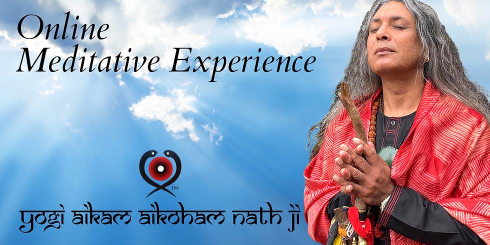 Online Meditative Experience
