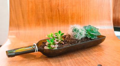 nomads-boutique-bouteille-plantes.jpg