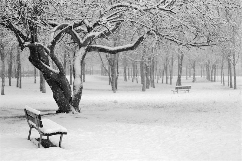 inverno 2013