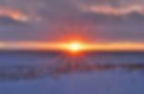 winter field.png