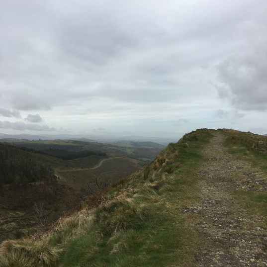 view from sugar loaf.JPG