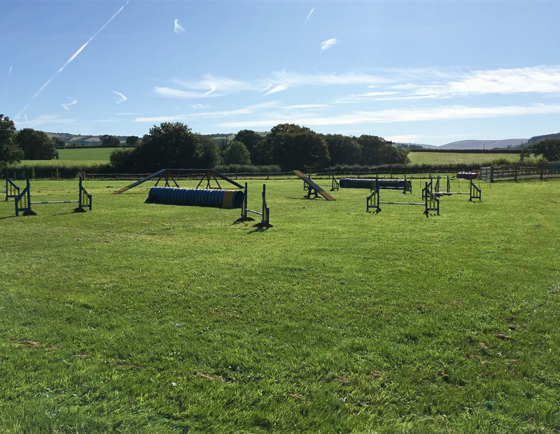 Dog Exercise Field and Agility Equipment