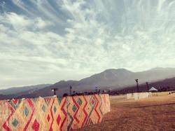 Coachella Snake Fence