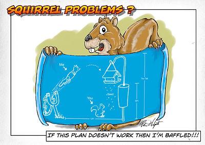 Squirrel Problems