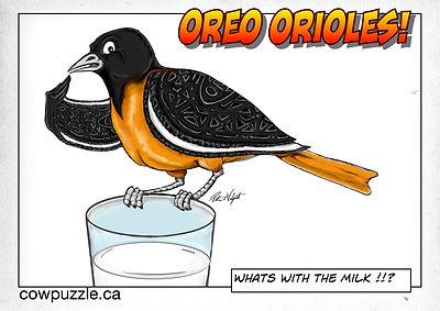 Oreo Oriole.jpg