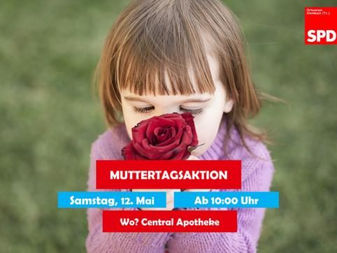 Rote Rosen für Steinbachs Mütter
