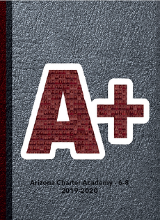 MS front of yearbook cover 2.png