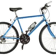 ブルーバイク