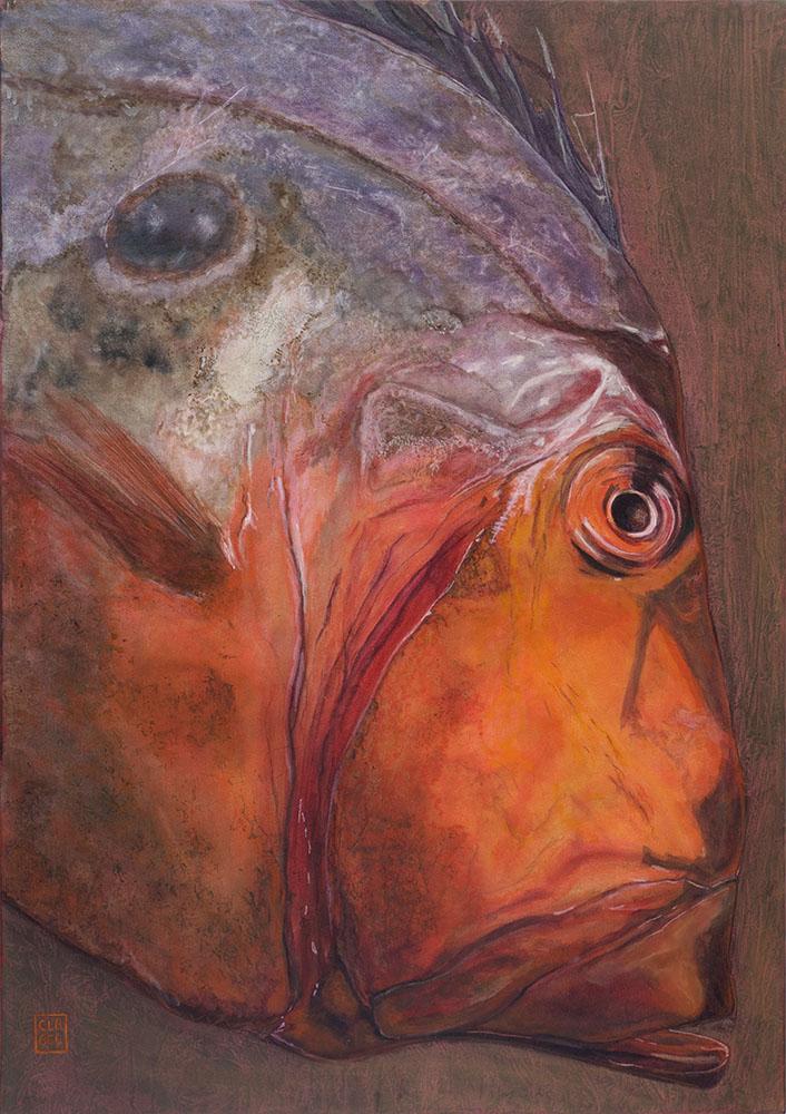 l'homme-poisson