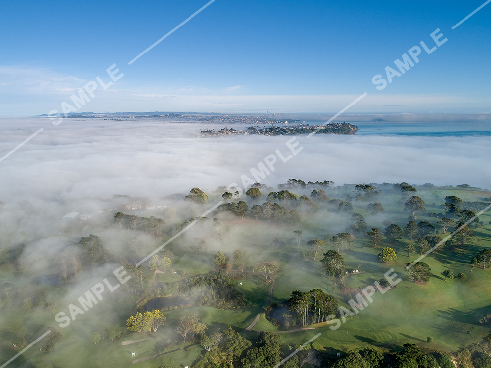 Musick Point Fog Aerial