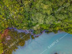 Mangemangeroa Walkway Drone Aerial Photograph