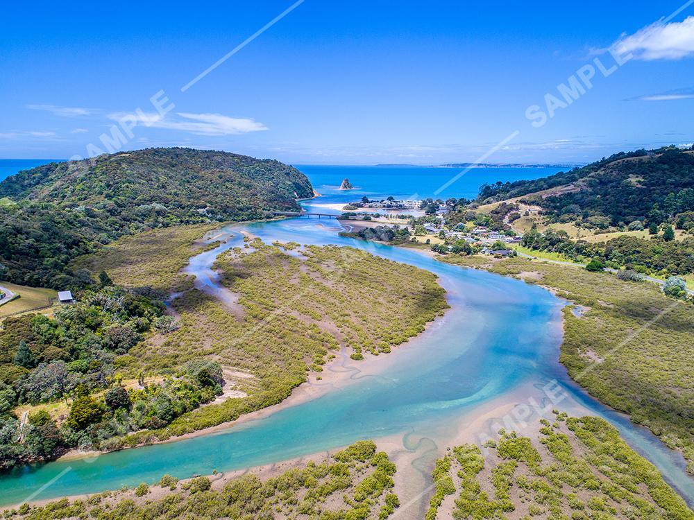 Waiwera River Mangroves Aerial