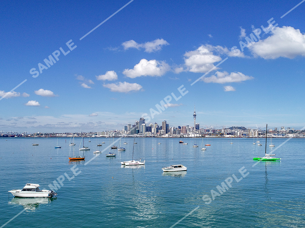 Auckland CBD view from boats
