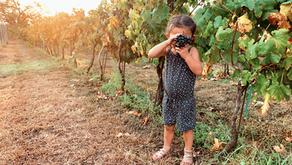 Fredericksburg, TX: Wine, Family + Golf