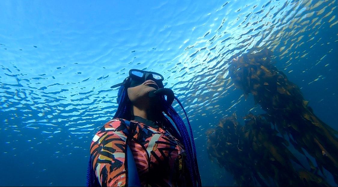 Snorkel & Freediving Trip