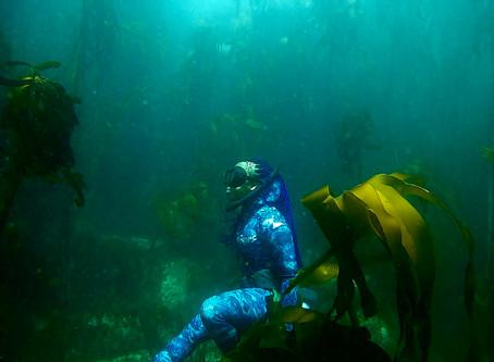 Diversifying Ocean Spaces