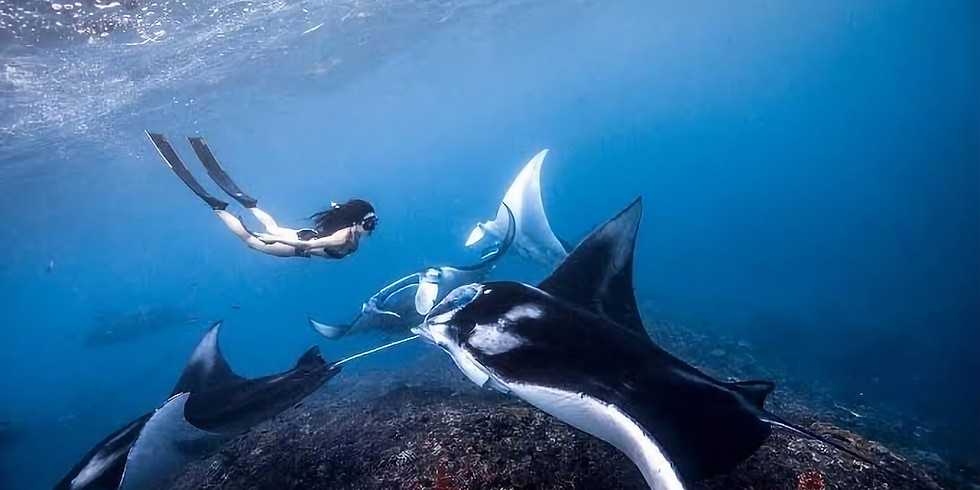 Ocean Exploration Trip!