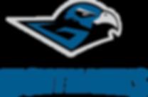 GuelphNighthawks_finalprimary_wBlackGuel