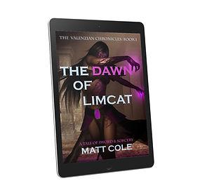 LIimcat Cover2.jpg