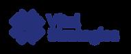 Vital Strategies_Logo_print_blue_Pantone