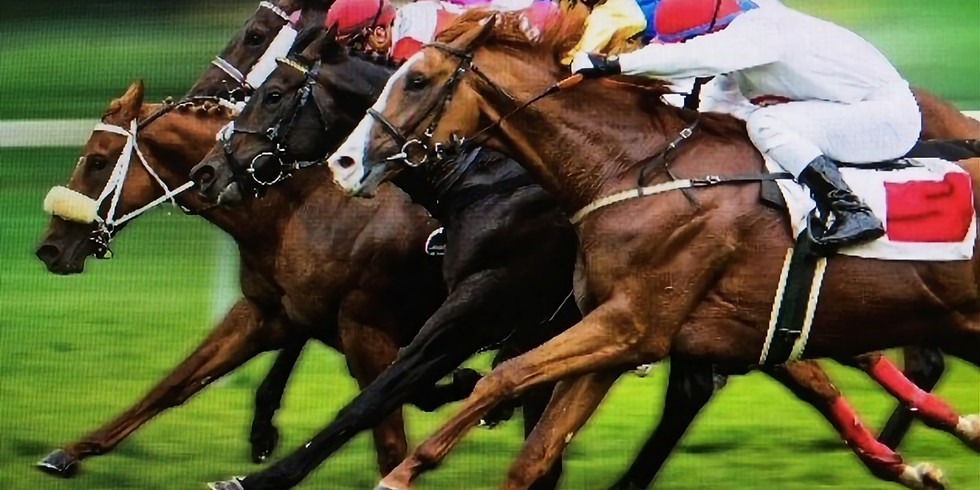 Race Night - Great fun for everyone / Soirée des courses