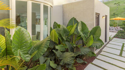 Residence Exterior Design