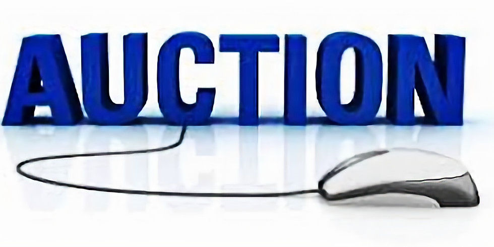 SILENT AUCTION ENDS 6/6 @ 11:59 pm