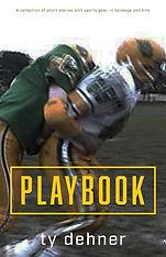 playbook_kindle_cover2.jpg
