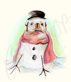 Frosty the Bulldog