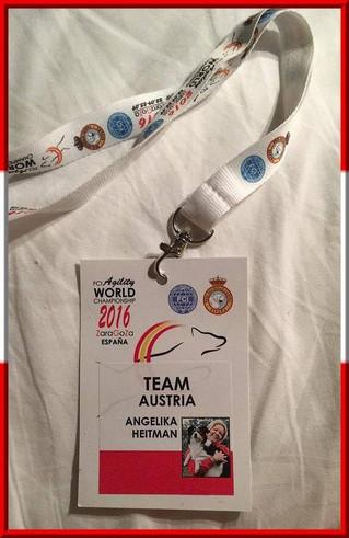 Agiltiy Weltmeisterschaft 2016 in Saragossa (Spanien): 22.- 25. September