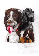 Dolly, Charlie & Ben - Commission
