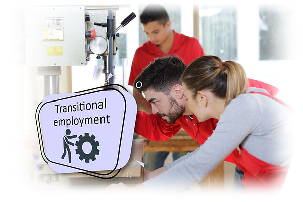 Working in transitional employment for occupational rehabilitation