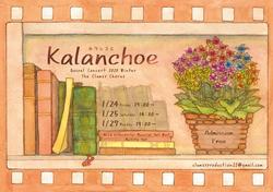 22冬公 Kalanchoe
