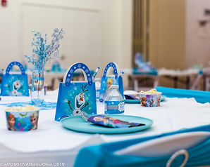 Muse Frozen Kids Party-3.jpg