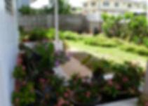 planter by front door.JPG