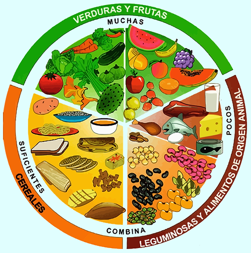 disco de nutrición femsalud