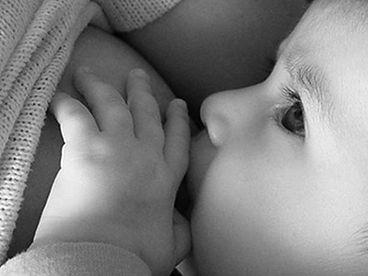 lactancia femsalud