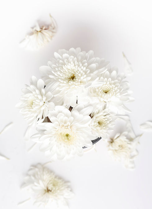 I%20love%20this%20flower%20so%20much._ed