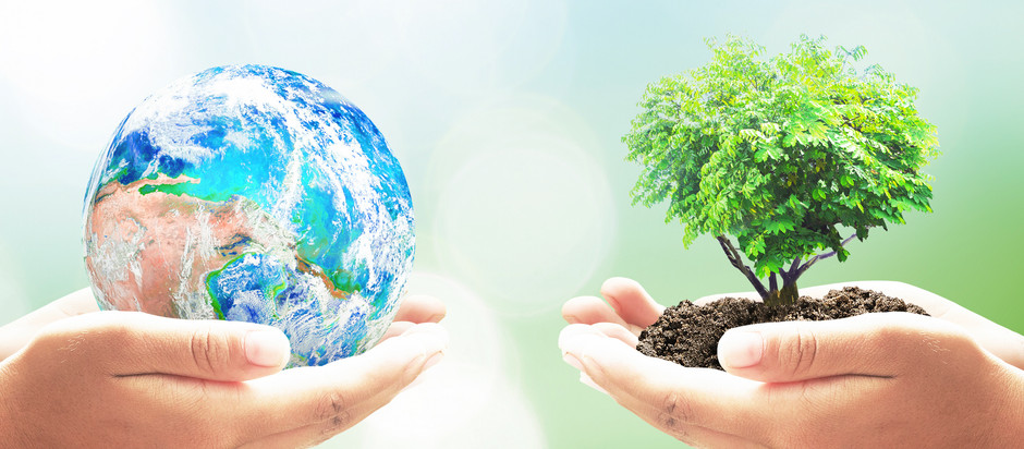 Today is Earth Day: What Can You Do?