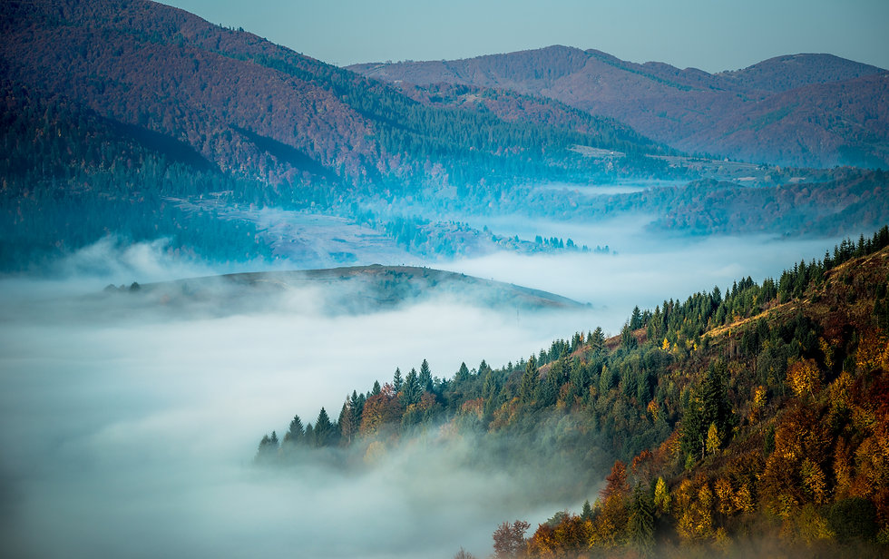 beautiful-morning-landscape-with-autumn-