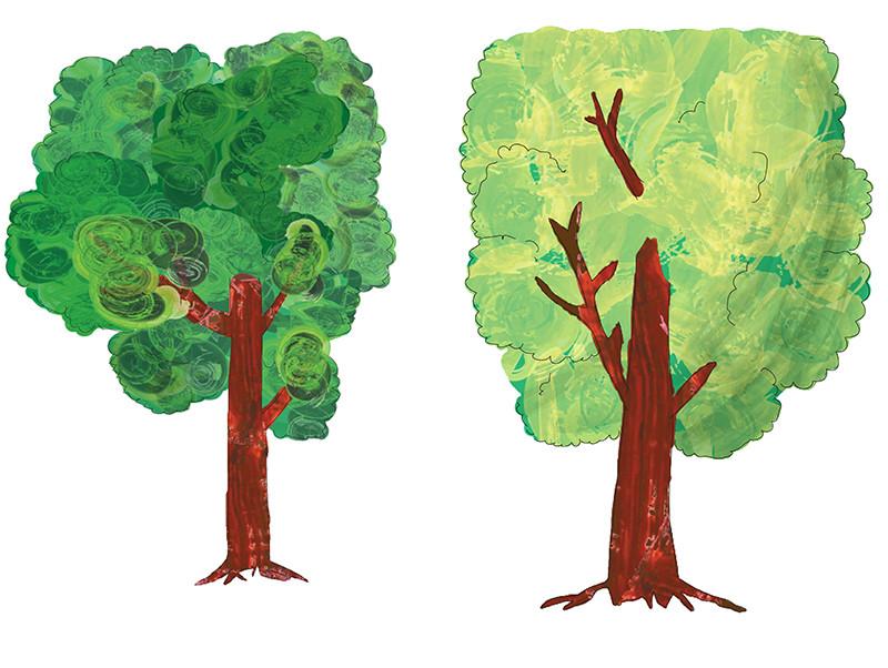 bomen-lr.jpg