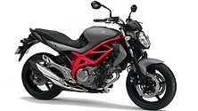 Suzuki Gladius.jpg