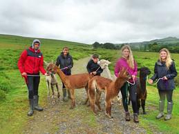 Atmospheric summer Dartmoor trek