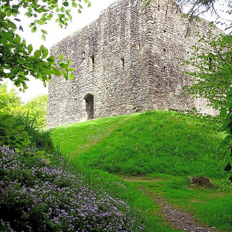 English Heritage Lydford Castle, Lydford