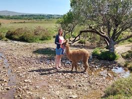 Summer trekking with Barney