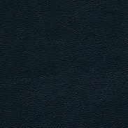 1110266.jpg